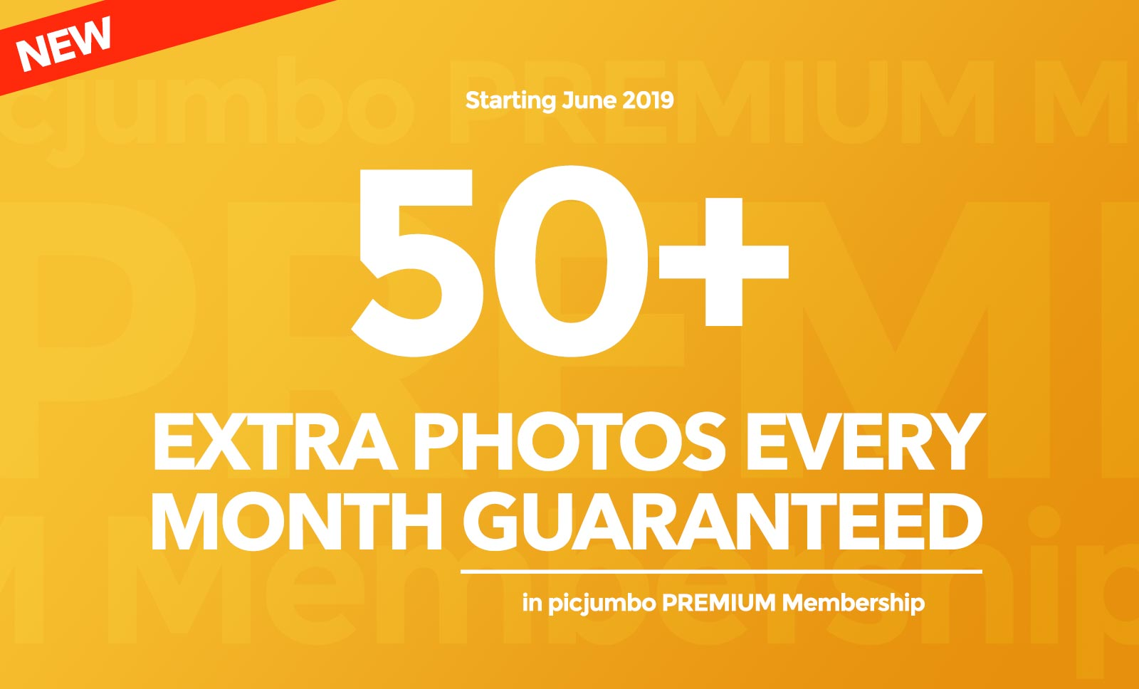 50+ extra photos every month guaranteed! — picjumbo BLOG