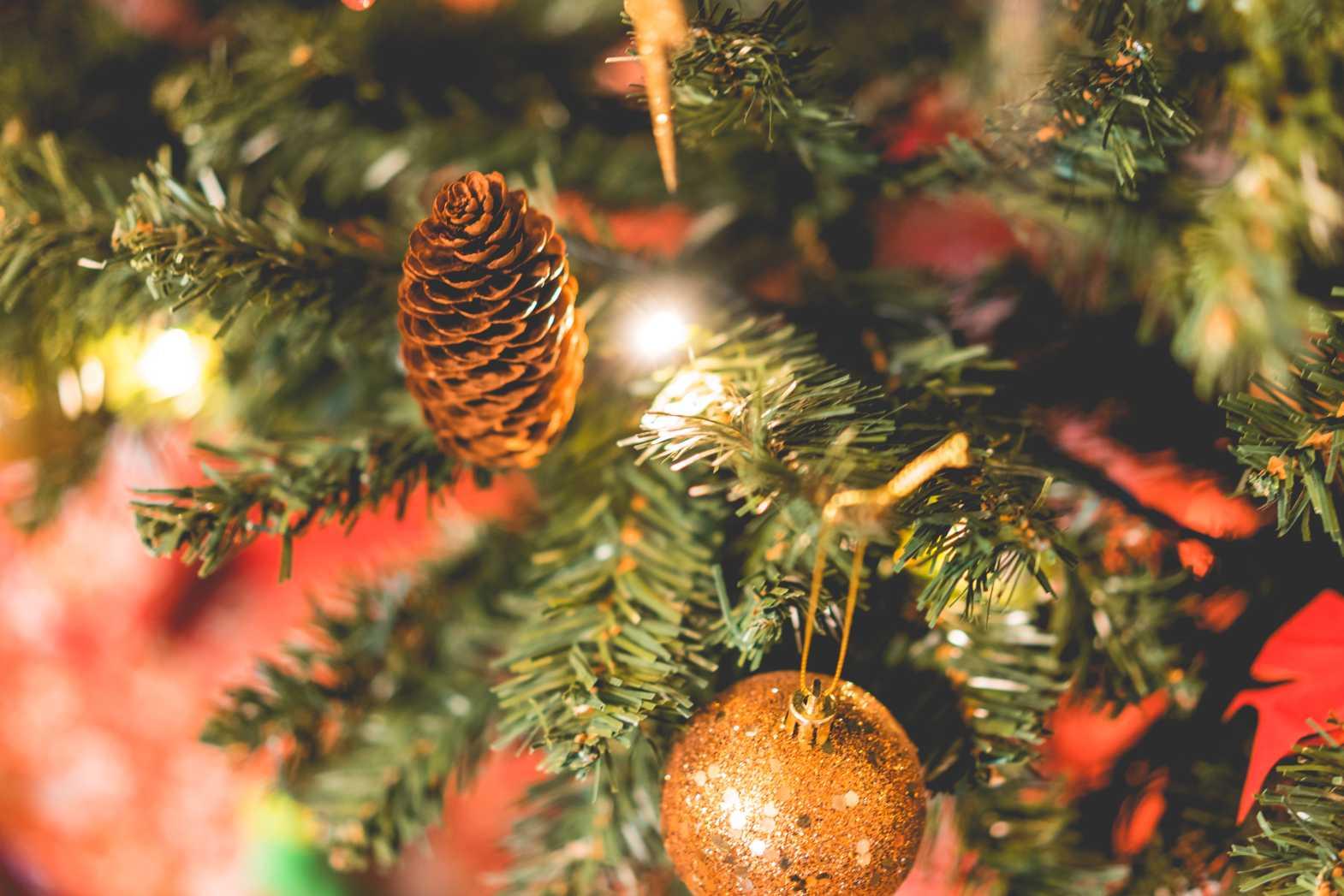 christmas cone free image
